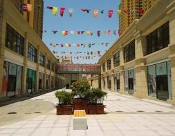 陕西商洛西街-大都会项目